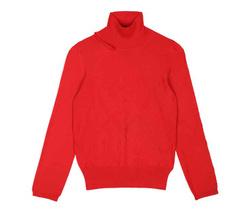 Turtleneack Sweater - Art. FW20WRNn003